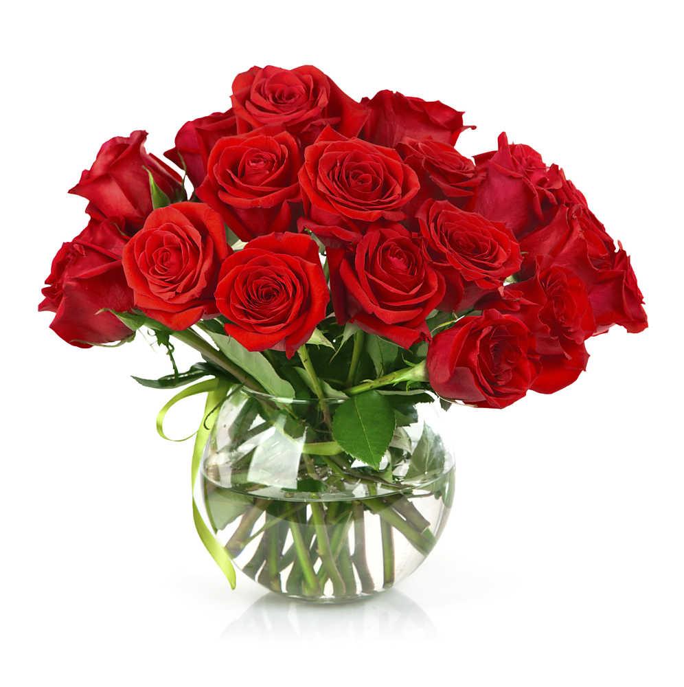 rosen-in-blumenvase